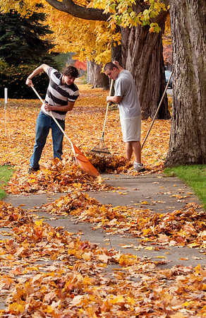 Record-Eagle/Douglas Tesner<br /> Adam Boomer and Ronnie Saunders, both students at Traverse City Central Senior High School, take advantage of the closed schools to earn extra money raking leaves. Both were earning money for lacrosse and wrestling fees and equipment.