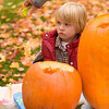 "Record-Eagle/Jan-Michael Stump<br /> Ben Sulecki, 6, watches his father Russ clean out a pumpkin outside their home on Randolph Street. Russ and Kristin Sulecki and their children Ben and Janie, 4, were all working on pumpkins. ""We get them for the kids,"" said Kristin, ""but they don't like the insides, and they can't do the carving, so they end up going to bed and we do the carving."""