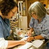 "Record-Eagle/Douglas Tesner<br /> Veterinarian Karen Mertaugh and veterinary technician Laura Boynton prepare a dog from the Cherryland Humane Society to be neutered during the ""neuter-a-thon."""