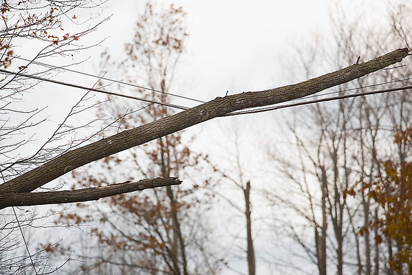 Record-Eagle/Jan-Michael Stump<br /> <br /> The Glen Lake Fire Department blocked off a section of West Harriger Road near Empire due to power lines downed by fallen trees in Wednesday's wind storms.