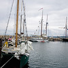 Record-Eagle/Keith King<br /> Boats are tied up in the Duncan L. Clinch Marina Saturday during the Michigan Schooner Festival.