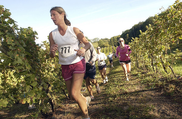 Record-Eagle/Garret Leiva<br /> Breanna Marsiglia, of Grand Rapids, leads a group of runners at the annual Harvest Stompede race Saturday through several Leelanau County wine vineyards. Race organizers said this year's Stompede drew nearly 1,000 participants in the 5K, 7 mile and walk categories. The Traverse City Track Club helped put on the race with proceeds benefiting the Cherryland Humane Society. The weekend event also featured a tour of Leelanau Peninsula Vintners Association wineries.