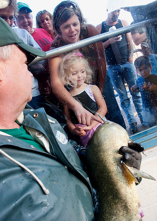Record-Eagle/Douglas Tesner<br /> With a little help from Terry Whiteford, Ava Hellem, 3, and her mother Margo Hellem get a close look at one of the salmon that was harvested from the Boardman River by the DNR and a company with which it contracts, Washington-based American Canadian Fisheries.