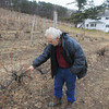 Record-Eagle/Keith King<br /> Warren Raftshol, co-owner, talks about the condition of grapevines Thursday at Raftshol Vineyards in Suttons Bay Township.