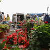 Record-Eagle/Keith King<br /> Flowers are displayed for sale as vendors and shoppers gather Saturday, May 12, 2012 during the Sara Hardy Downtown Farmer's Market.