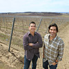 Record-Eagle/Keith King<br /> Brothers Todd Oosterhouse, left, and Carter Oosterhouse stand Wednesday, April 24, 2013 at their vineyard in Peninsula Township.