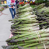Record-Eagle/Keith King<br /> Asparagus is offered for sale from Alan and Fran Jones with Greenrock Farm Saturday, May 12, 2012 during the Sara Hardy Downtown Farmer's Market.