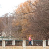 Spec Dog Walk