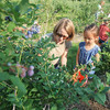 Record-Eagle/Keith King<br /> Becky Seah, of Traverse City, and her daughter Hannah Seah, 4, pick blueberries at Buchan's Blueberry Hill on Old Mission Peninsula.