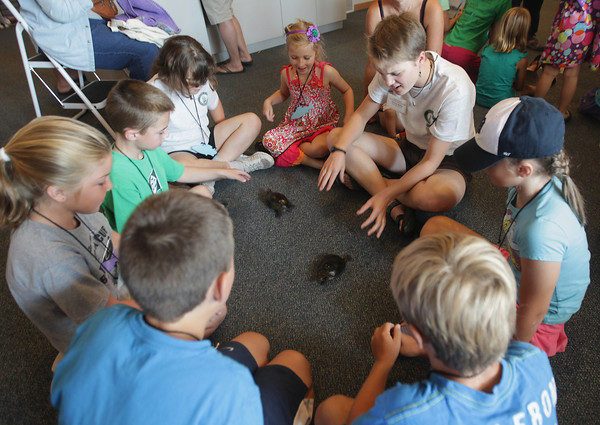 "Record-Eagle/Keith King<br /> Volunteer Emma Kelly, top right, explains facts about painted turtles Friday, August 16, 2013 as children learned about turtles during Family Science Day at the Inland Seas Education Association education center in Suttons Bay. Family Science Day is scheduled next for August 23 with the theme,"" Paddle to the Sea."""