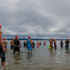SWIM FOR GT BAY