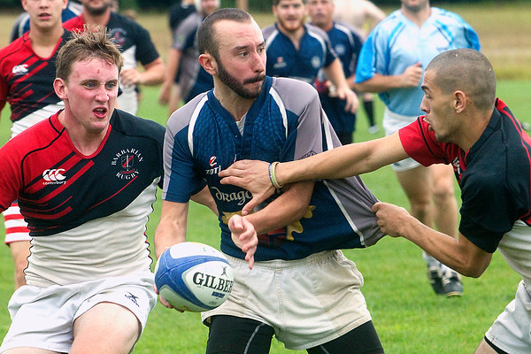 Cherry Cup Rugby