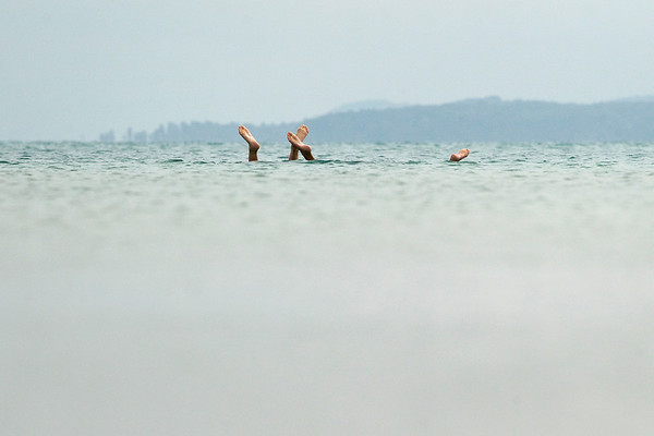 TORCH SWIMMERS
