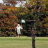 Record-Eagle/Jan-Michael Stump<br /> Elk Rapids Golf Club estimates 90 trees, such as this honey locust, are damaged, at least 40 of those dead, after using a DuPont pesticide called Imprelis, which has been recalled by the Environmental Protection Agency for causing damage to trees.