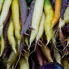 PROVIDENCE ORGANIC FARM