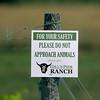 GILL'S PIER RANCH AND FARM MARKET
