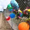 Record-Eagle/Keith King<br /> Balloons and flowers are arranged on a fence at the Northwestern Michigan Fair Thursday, August 9, 2012 following news of the death of Ezekiel Goodwin after he was hit by a pickup truck Wednesday.