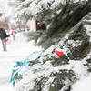 Record-Eagle/Keith King<br /> Snow accumulates Friday in downtown Traverse City.