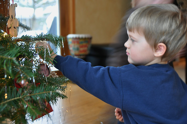 Record-Eagle/Vanessa McCray<br /> Gilman Piche, 5, hangs an ornament back on his grandparents' Christmas tree.