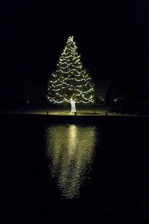 LELAND LIGHTS