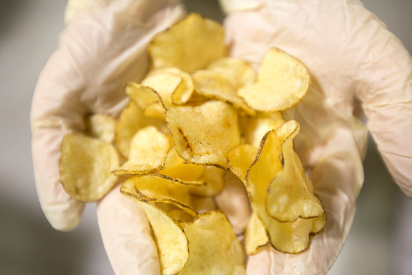 FOOD CHIPS