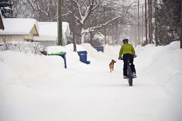 Record-Eagle/Allison Batdorff<br /> A snow day from school sent Maya Howard for a spin on the family's fat bike. Howard, 12, rode the bike in an alley in Traverse City's Central neighborhood. Once a niche item, fat bikes now enjoy more mainstream popularity.