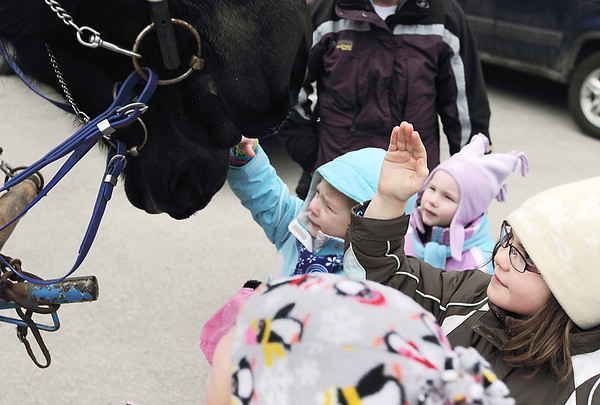 Record-Eagle/Keith King<br /> From left, Dani Cronin, 5, of Traverse City; Casey Meredith, 3, of Lake Ann; and Cora Scott, 8, of Lake Ann, have a close-up encounter with Percheron horses during the annual Lake Ann Snow Pine Festival. The horses, belonging to Two Fools Carriages, of Lake Ann, were on hand for wagon rides as part of the event.