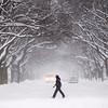 Spec Snow Weather