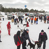 Record-Eagle/Keith King<br /> Preparations are made for sled-dog racing Friday at the Kalkaska County fairgrounds during the annual Kalkaska Winterfest, which is scheduled through Sunday.