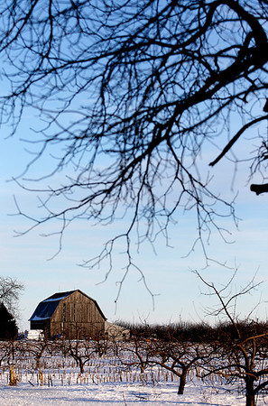Record-Eagle/Jan-Michael Stump<br /> A barn sits in the late-day sun along Angell Road in Yuba.