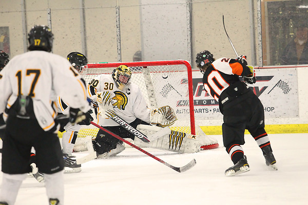 Record-Eagle/Jan-Michael Stump<br /> Brother Rice's John Zalecki (20) beats Traverse City Central goalie Bill Vermetten high on the glove side for a second-period  goal in Friday's 4-1 win over the Trojans.