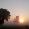 Record-Eagle/Jan-Michael Stump<br /> The sun rises over a foggy field along 3 Mile Road Friday morning in East Bay Township.