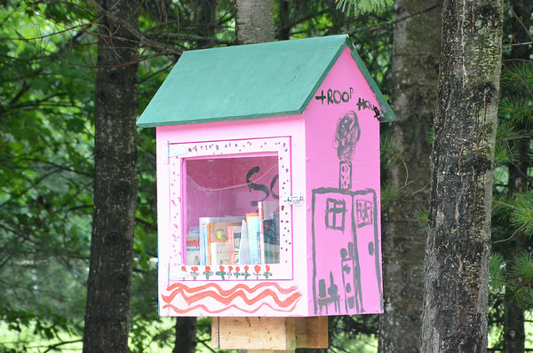 Record-Eagle/Allison Batdorff<br /> Girl Scouts of Michigan Shore to Shore troops built and painted the Little Free Libraries at Easy Bay Township parks.