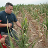 Record-Eagle/Keith King<br /> Matt Breithaupt, of Grant Township, as well as owner of Long Acre Farms, alongside his son, Ty Breithaupt, 7, stands near a neighbor's corn as he explains Thursday, July 19, 2012 damage it has suffered from heat and lack of sufficient moisture.