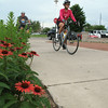 Record-Eagle/Glenn Puit <br /> Bikers roll past flowers on the TART Trail recently during the Tour De TART fundraiser. More than 600 riders rode bikes on the trail to Suttons Bay. A new study commissioned by TART highlighted the economic benefits of the Vasa Pathway, which is part of the TART network of trails.