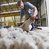 Record-Eagle/Keith King<br /> Isaac Matchett, of Charlevoix, and co-owner of Matchett Sheep Farm, shears a lamb Tuesday, July 31, 2012 at the Northwestern Michigan Fairgrounds in preparation for the Northwestern Michigan Fair which is scheduled for August 4 through August 11.