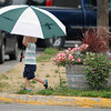 Record-Eagle/Jan-Michael Stump<br /> Zach Holzapfel, 3, of Cincinnati, carries an umbrella through downtown Suttons Bay with his family Tuesday.