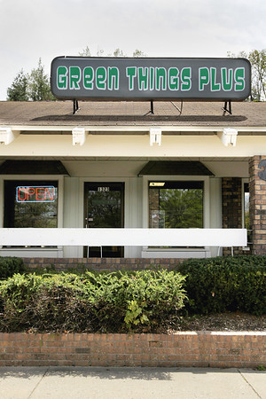 Record-Eagle/Keith King<br /> Green Things Plus at Hillside Plaza in Traverse City.