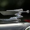 NCF CAR SHOW