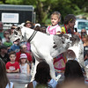 Record-Eagle/Keith King<br /> Yvonne St. Croix, 6, of Traverse City, walks Eddy, her Great Dane, during the National Cherry Festival Kids' Pet Show at F&M Park in Traverse City. Eddy weighs approximately 160 pounds.