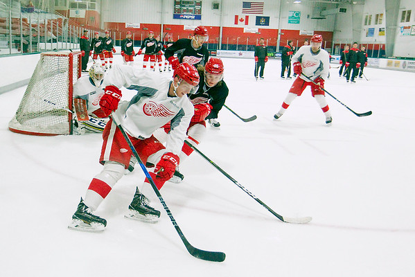 RED WINGS PROSPECTS