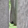 TREE READER