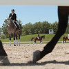 Record-Eagle/Keith King<br /> Horses and their riders utilize the schooling ring Friday during the eighth annual Horse Shows by the Bay Equestrian Festival at Flintfields Horse Park in Acme Township.