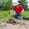 BOARDMAN MILKWEED PLANTING