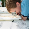 Record-Eagle/Keith King<br /> Alex Shumaker, 7, of Traverse City, uses a magnifying glass to look for aquatic insects in water from Jack's Creek, a tributary of the Boardman River, as part of a Watershed Center Grand Traverse Bay exhibit during the Boardman River Nature Fest at the Boardman River Nature Center.