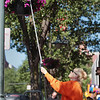 "Record-Eagle/Keith King<br /> Penny Lautner, an employee with the Traverse City Downtown Development Authority, waters petunias Tuesday along Front Street in downtown Traverse City. It takes Lautner approximately two and a half hours to water the petunias along Union Street, Front Street and Cass Street, a task she tries to do every other day. ""I pray for rain a lot,"" Lautner said."