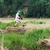 Record-Eagle/Jan-Michael Stump<br /> Volunteer Loraine Laird carries native plants over a small creek and she and other Grand Traverse Conservation District staff and volunteers a recent morning digging up and potting plants from the Brown Bridge Quiet Area. Recently exposed Boardman River bottom land areas will be impacted by heavy equipment and dredging later this summer as part of the Brown Bridge Dam removal project. The plants will be saved for future plantings once the project is complete.