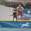 Record-Eagle/Keith King<br /> Spree, a chocolate lab, jumps for a bumper as owner, Lynzie Bacchus, of Fowler, looks on Friday, July 5, 2013 at Ultimate Air Dogs during the 87th National Cherry Festival.