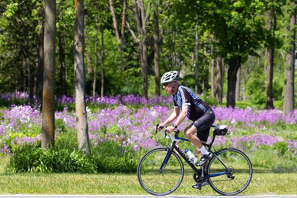 Spec Bike Flower