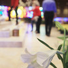 Record-Eagle/Keith King<br /> An Easter lily stands on the floor prior to being placed by a member of the St. Francis of Assisi Catholic Church Arts and Environment committee Friday, March 29, 2013 as the church is decorated for the Easter season.